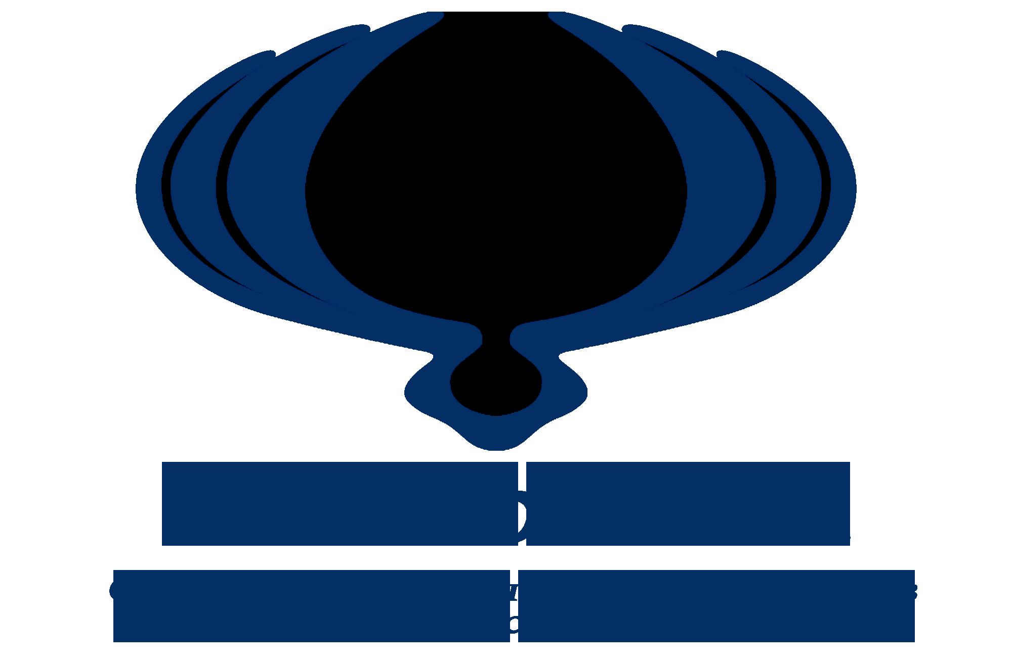 Логотип клуба.png